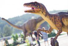 Atidarytas dinozaurų parkas