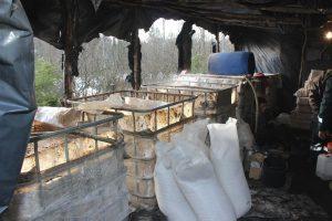 Telšiškiai miške gamino šimtus litrų naminukės