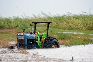 Lietuva kreipėsi į Europos Komisiją dėl pagalbos žemdirbiams