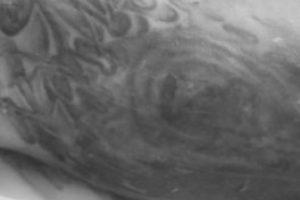 Prašo pagalbos: negyvėlį gali padėti atpažinti ši tatuiruotė