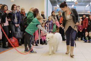 Klaipėdiečiai myli ne tik veislinius šunis