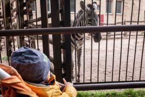 Zoologijos sode – jubiliejinio gimtadienio siautulys