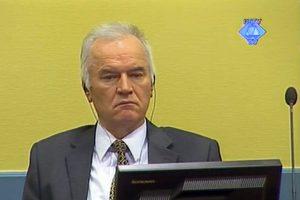 JT teismas: R. Mladičiaus gynybos liudytojo mirtis buvo natūrali