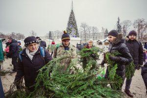 Kasmetinė akcija: miškininkai dovanojo kalėdines eglių šakas
