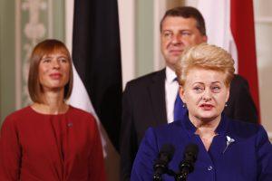 Naujo aljanso užuomazgos? Prie Baltijos ir Šiaurės šalių jungiasi airiai ir olandai