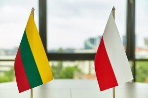 Lenkijos institutas Vilniuje švenčia 20-metį