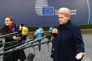 D. Grybauskaitė: civilių žudymas Sirijoje artėja prie karo nusikaltimo ribos