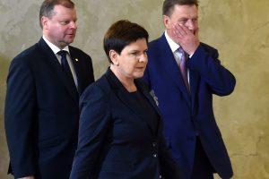 Lietuva ir Lenkija pasirašys susitarimą dėl elektros tinklų sinchronizavimo