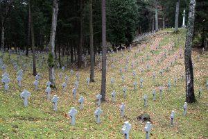 Karo istorikai Vilniuje ieško nepriklausomybės kovų karių kapų