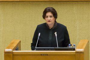 L. Graužinienė: reikia iš esmės sutvarkyti Viešųjų pirkimų įstatymą
