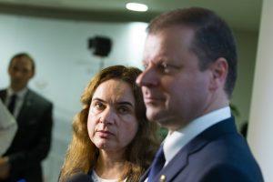 S. Skvernelis apie ministro paiešką: sėkmingi žmonės nenori į politiką