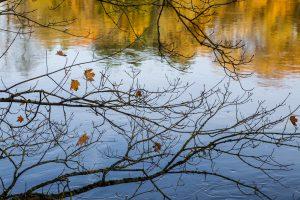 Biržų rajone tvenkinyje nuskendo moteris
