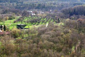 Daugiausia pažeidimų regioniniuose parkuose – dėl užgrobtos žemės