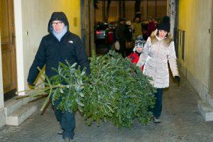 Šventės baigiasi: kur atsisveikinti su Kalėdų eglutėmis?