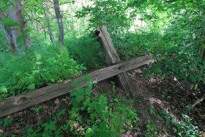 Kultūros vertybių registrą papildė pernai rastas Radiškio piliakalnis