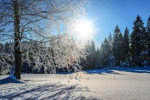 Savaitės orai: šaltis grįš su trenksmu