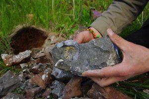 """Mineralų mėgėjų """"sumedžioti"""" pavyzdžiai praverčia ir geologams"""