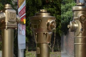 Dar neregėta: Austrijos mieste stovi auksiniai hidrantai