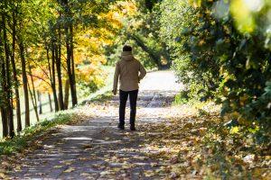 Pradėję kristi lapai – pavojus tiek vairuotojams, tiek pėstiesiems