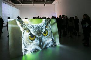 """Į """"JCDecaux premiją"""" pretenduoja penki jaunųjų menininkų kūriniai"""