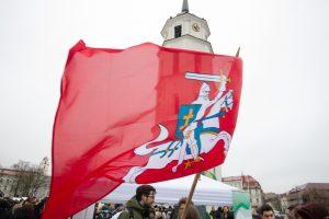 Per šventes prie valstybės ir savivaldybių pastatų reikės kelti ir vėliavą su Vyčiu