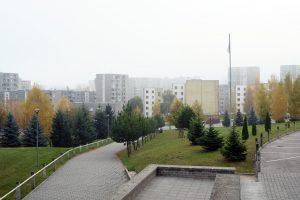 Alytaus rajono valdžia nepritaria miesto savivaldybės išplėtimui