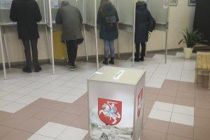 Politologė apie rinkimus: didmiesčiuose valdžia labiau tolsta nuo gyventojų