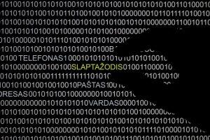 """Internete aptikta milžiniška """"nulaužtų"""" slaptažodžių kolekcija: ar vertėtų sunerimti?"""