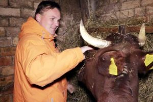 G. Leškevičius grįžo į vaikystę: melžė karves