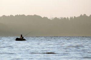Kauno mariose – beveik keturis kartus daugiau žuvies nei prieš penkmetį