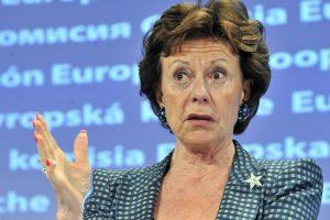Po Bahamų dokumentų nutekinimo – raginimai ES išsiaiškinti slaptus ryšius