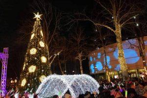 Palangoje įžiebta žaliaskarė: teprasideda spindinčios Kalėdos