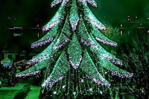Kalėdinė Širvintų eglė vietos gyventojams gražesnė nei Vilniaus