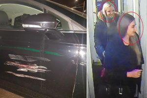 Apgadino automobilį ir pasišalino iš įvykio vietos (ieškomos liudininkės)