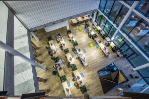 Trys universitetai tapo vienu: pasibaigė VDU, ASU ir LEU reorganizavimas