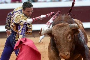 Prancūzijoje į areną įšokusį koridos priešininką sužeidė bulius