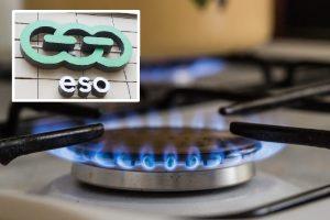 ESO tyčiojasi iš klientų: per didžiausius šalčius – išjungtos dujos