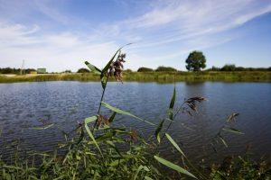 Pirmąją rugpjūčio dieną vanduo pasiglemžė bent dvi gyvybes