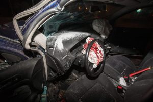 Varėnos rajone mašinos ir briedžio susidūrimas baigėsi liūdnai