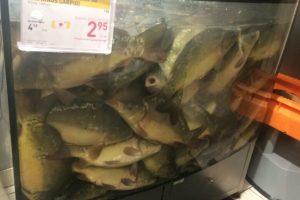 Pirkėją sukrėtė graudus vaizdelis žuvies skyriuje
