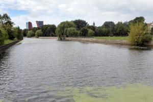 Klaipėdoje iš Danės upės magnetais ištraukti senoviniai šoviniai