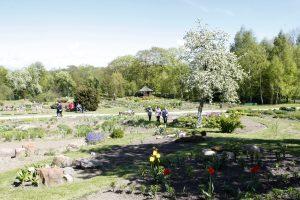 Botanikos sode – nemokami šokių užsiėmimai