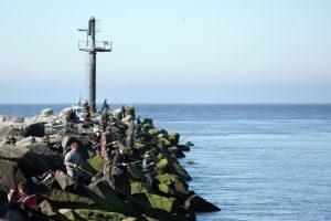 Molus okupuoja žvejai