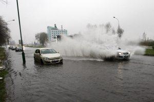 Sportinis plaukimas Klaipėdos gatvėmis