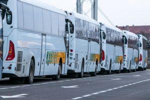 Į pasaulio čempionatą Kaune – autobusai iš visos Lietuvos