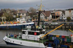Skubinamasi išdalyti žvejybos kvotas