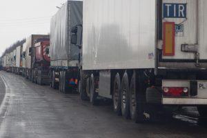 Abejoja vežėjų galimybėmis įsteigti nuosavą draudimo bendrovę