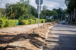 Protestuotojams – Kauno savivaldybės atsakymai dėl medžių