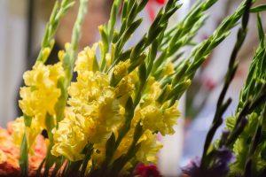 Aiškinosi, kokios gėlės Rugsėjo 1-ąją yra populiariausios