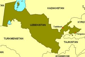 Uzbekistane azoto trąšų gamykloje nugriaudėjo sprogimas, yra aukų